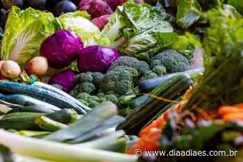 Agricultores de Rio Novo do Sul agora entregam alimentos em domicílio - Dia a Dia Espírito Santo