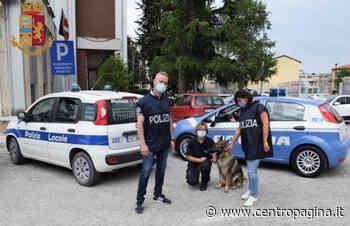 Ascoli Piceno, spaccia cocaina nell'officina: arrestato un insospettabile 36enne - Centropagina