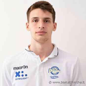 Cividale del Friuli, tra gli obiettivi di mercato c'è l'ex Poderosa Montegranaro Matteo Berti - Serie B - Basketmarche.it