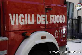 Albero caduto sulla Sp 45 tra Spotorno e Voze: intervento dei vigili del fuoco - SavonaNews.it