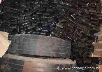 Polícia prende traficante com quase meia tonelada de maconha em Cotia - Cotia e Cia