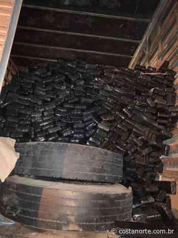 Polícia Civil prende traficante com 433kg de maconha em Cotia - Jornal Costa Norte