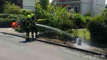 Einsatz in Rellingen: Propangasflasche fängt Feuer: Flammen springen auf Hecke über   shz.de - shz.de