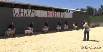 Nipomo High School holds livestock fair for agriculture students in place of canceled county fair - KEYT