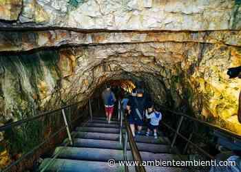 """Riaprono le Grotte di Castellana, nel weekend 1500 visitatori: """"Dato oltre le attese"""" - AmbienteAmbienti"""