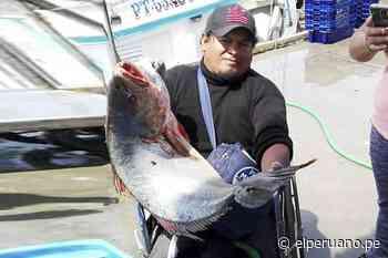 Conoce a Edwin Marreros, pescador artesanal del muelle de Ilo, que desea ser ingeniero pesquero [video] - El Peruano