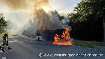 Linienbus brennt in Peine aus - Wolfsburger Nachrichten