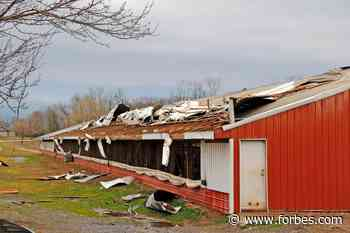 You Can Help Scientists Improve Weather Warnings Right From Your Living Room - Forbes