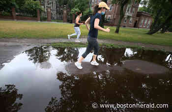 Fowl Weather in Boston - Boston Herald