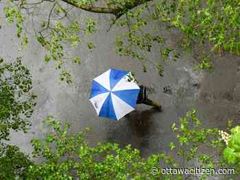 Weather: Cloudy, rainy and chance of thunderstorms - Ottawa Citizen