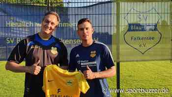 Blau-Gelb Falkensee: Dritter Neuzugang kommt vom Stadtrivalen - Sportbuzzer