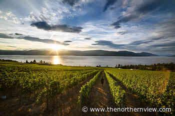 From Valleys to Vineyards: British Columbia's Bountiful Playground - Prince Rupert Northern View