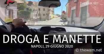 VIDEO Marano di Napoli, droga: 14 arresti dell'Antimafia. Tutti i nomi - The Wam