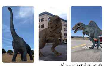 Google 3D dinosaurs: now you can play with AR Jurassic World dinosaurs in Google Search