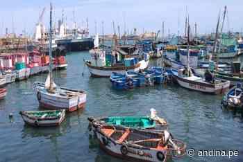 Día de San Pedro y San Pablo: Gobierno saluda a pescadores peruanos y resalta su labor - Agencia Andina