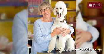 Lindau: Schlussstrich für Hundesalon Andi - Schwäbische
