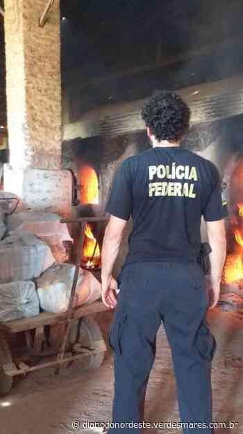 Polícia Federal incinera mais de 1,6 tonelada de drogas em Aquiraz, na Grande Fortaleza - Diário do Nordeste