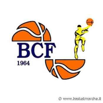 Basket Club Fratta Umbertide, il video degli allenamenti individuali delle squadre giovanili - - Basketmarche.it