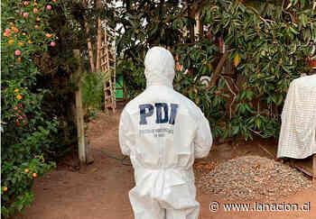 Investigan homicidio de repartidor de delivery en Buin: le robaron motocicicleta - La Nación (Chile)