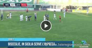 Bisceglie, in Sicilia serve l'impresa - TRNEWS - Puglia e Basilicata - Teleregione Canale 14