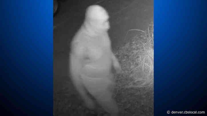 Police Searching For Man Who Broke Into Longmont Home And Tried To Sexually Assault A Child