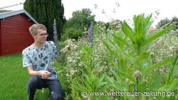 Jung-Botaniker: Jakob Nolte ist mit 19 Jahren schon gefragter Experte - Wetterauer Zeitung