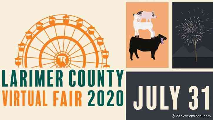 Larimer County Fair Rodeo Canceled, Fair Will Continue With Competitions, Virtual Events