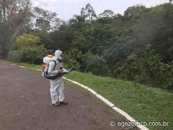 Campo Bom faz desinsetização para controle do Aedes aegypti - AGazetaCB