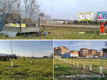 150 alberi per i nuovi nati a Fiorano - Modena 2000