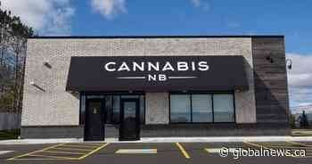 Cannabis NB CEO expects Crown corporation to be profitable this year as potential sale looms