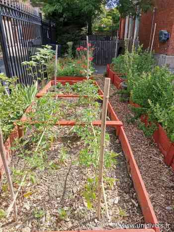 Visite guidée du jardin partagé de la maison de quartier des Sorbiers Jardin de la maison de quartier des Sorbiers samedi 4 juillet 2020 - Unidivers