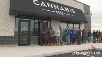 NB Cannabis turning a profit despite possible sale