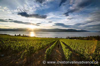 From Valleys to Vineyards: British Columbia's Bountiful Playground - Creston Valley Advance