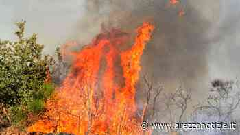 Dal primo luglio divieto di accendere fuochi. Arezzo tra le province a più rischio incendio - ArezzoNotizie