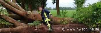 Feuerwehr: Kurzes Unwetter verursacht Schäden - Nordwest-Zeitung