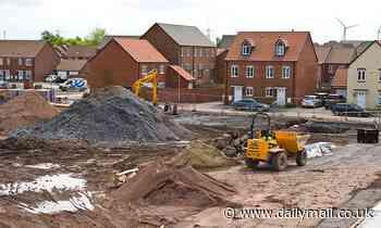 Yes, build, build, build! But DON'T pave over paradise, urges GEOFFREY LEAN