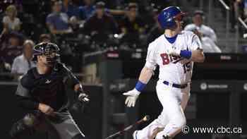 Minor league baseball officially nixed for 2020 season