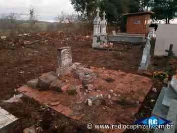 Bovinos causam prejuízos em cemitério do interior de Capinzal - Rádio Capinzal