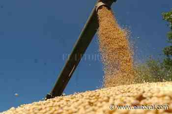 Crece la presión impositiva sobre el agro - EL LITORAL