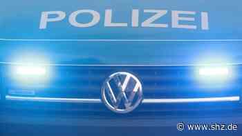Tornesch und Elmshorn: Ziegen an den Gleisen, Steine auf den Schienen: Bundespolizei zweimal im Einsatz | shz.de - shz.de
