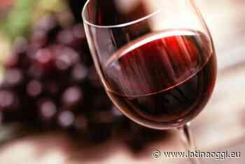 Vino italiano d'eccellenza: Latina, l'Agro Pontino e Nettuno sbancano il 5StarWines - latinaoggi.eu
