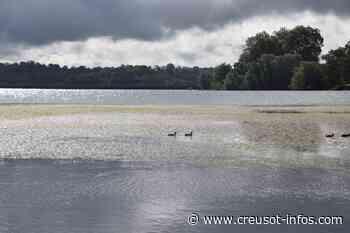 TORCY : Des milliers de fleurs sur le lac - Creusot-infos.com