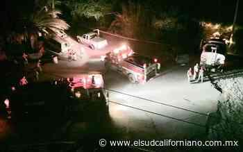 Incendio afecta a casi 10 hectáreas de palmar en Mulegé - El Sudcaliforniano