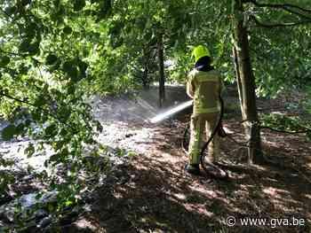 Brand(je) breekt uit in bos Toekomstlaan (Herentals) - Gazet van Antwerpen