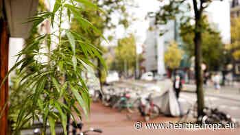Shipping medical cannabis: a Dutch perspective - Health Europa