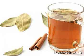 Chá de louro com canela é um excelente aliado à saúde - Arial