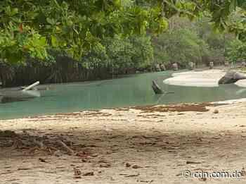 Encuentran a pescador ahogado en Las Galeras de Samaná - CDN