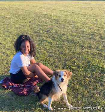 Girl, 14, attacked by dog in Rushley Park, Basildon