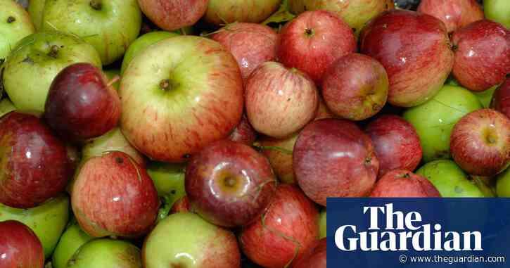Calls to restart fruit and vegetable scheme in English schools