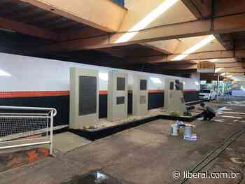 O Liberal Rio Branco realiza pintura no Estádio Décio Vitta - O Liberal